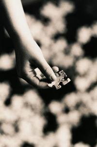 puzzle_piece.jpg